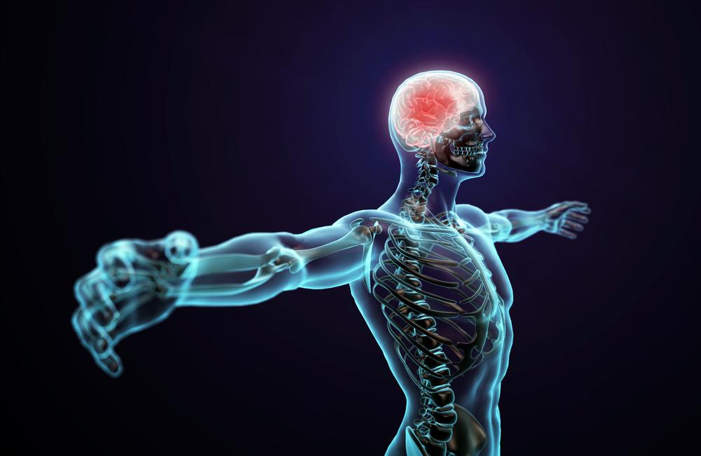 chronic pain central nervous system