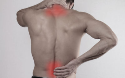 Evolution of Neck and Back Pain