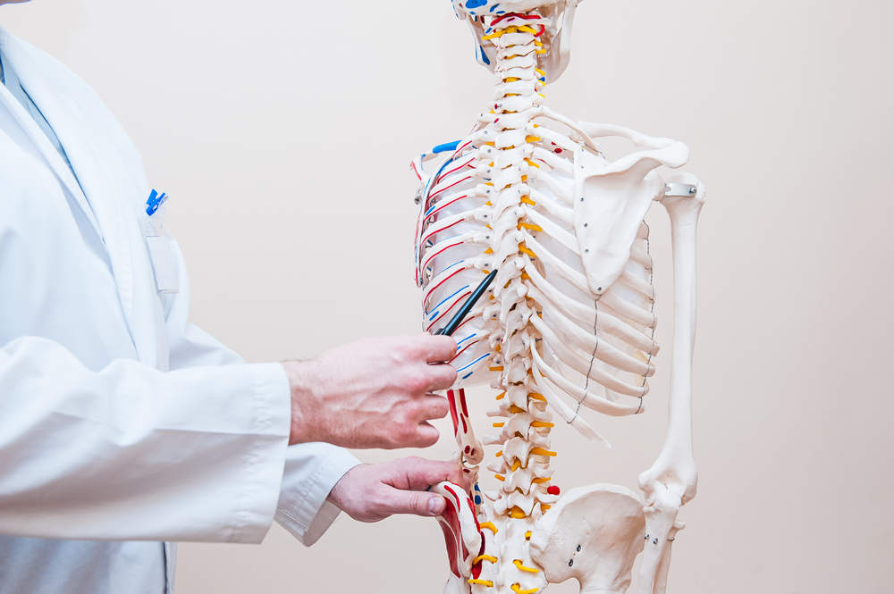 Spinal Cord Injuries And Their Impact Throughout The Body