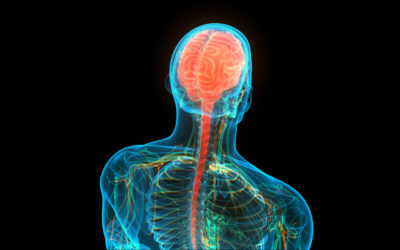 How Chronic Pain is Detected in the Nervous System